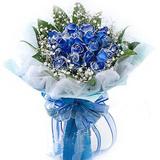 19朵蓝色妖姬爱的最高点