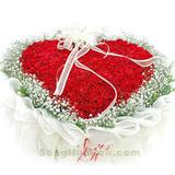365朵红玫瑰天天想你
